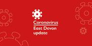 East Devon virtual council meetings