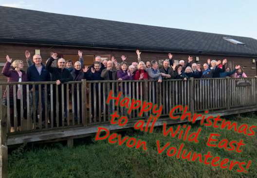 Volunteering with Wild East Devon