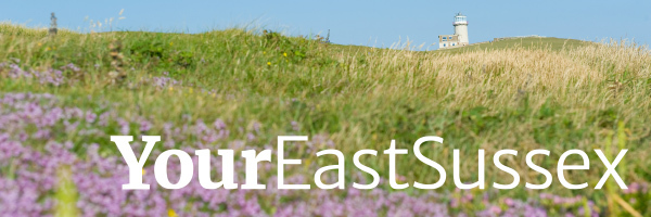 Your East Sussex logo