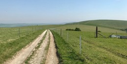 South Downs.