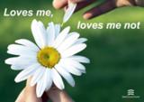 Loves me, love me not