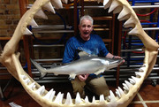 a man holding a model of a shark