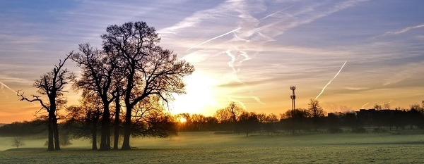 A park with a winter fog and the sun glinting through the clouds