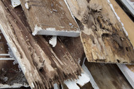 Planks of rotten wood