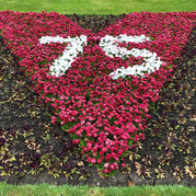 VE Day flowerbed