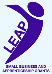 LEAP funding business