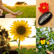 Summer wellbeing image