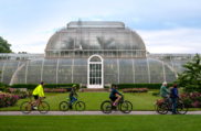 Kew Summer Cycle