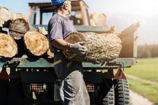 male farmer at work