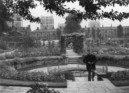 Kennington Park sunken garden