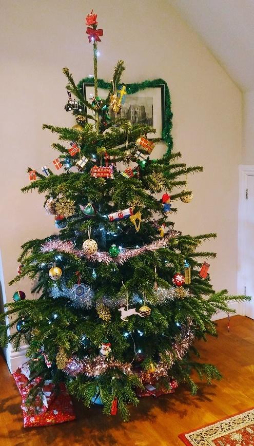 Xmas tree indoors