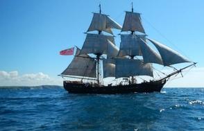 Phoenix Tall Ship