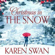 Christmas in the snow book cover