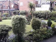 Harpurhey Community Garden