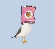 Bird with crisp bag on head