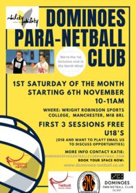 ParaNetball poster