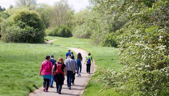 Stock image of people walking through green park