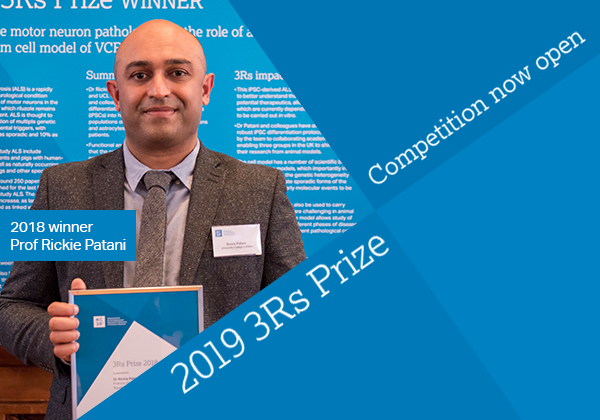 Apply now for the 2019 International 3Rs Prize