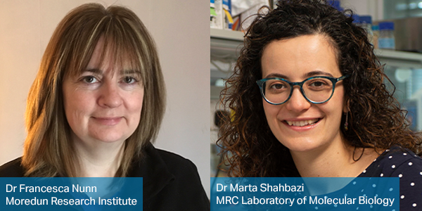 Congratulations to our 2019 International 3Rs Prize winners