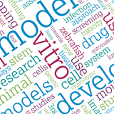 Word cloud including words such as model, development, vitro and cell