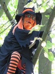 Halloween at Rufford Country Park