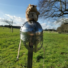 Bracken, a cuddly toy hedgehog, is perched atop a viking helmet in a green field