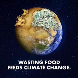 Food waste feeds climate change