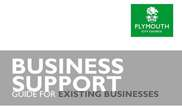 Business Support Guides