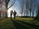 Photograph of walkers with walking poles by a tree
