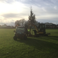 Trees being planted in St George's Playing Field