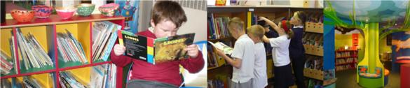 Foyle library scheme