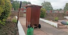 Graden waste - brown bin