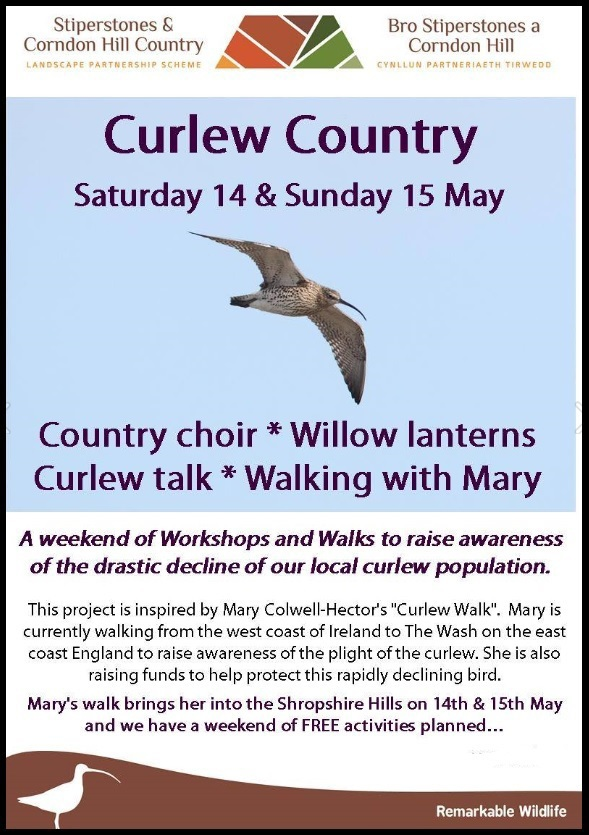LPS Curlew Country