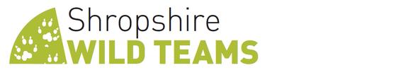 Wild Team Logo