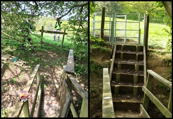 Martin P3 - Steps and Gate