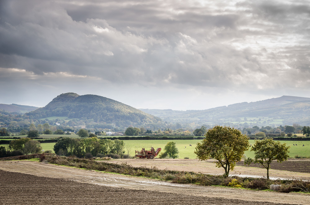 Farming in the Shropshire Hills, by Phil King
