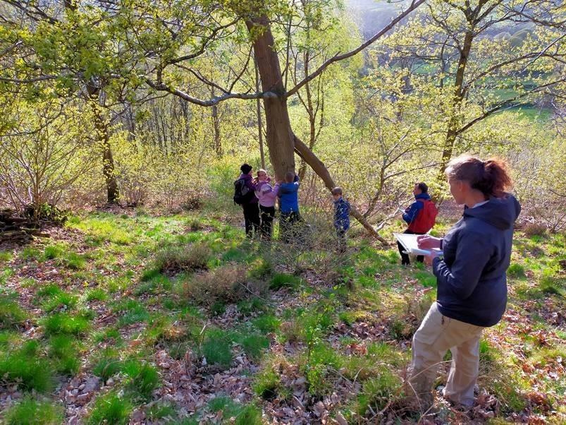 young rangers nest box survey