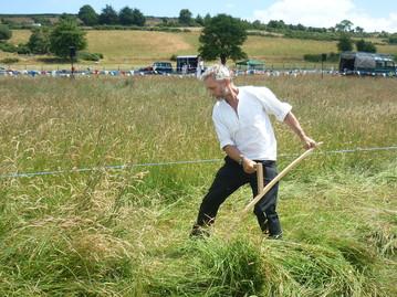 hay meadow fest