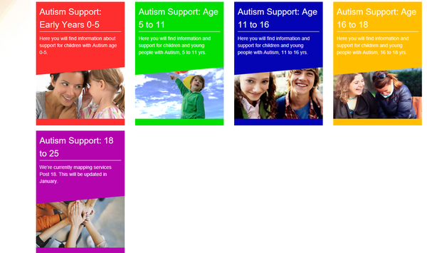 autism pathway- screenshot local offer