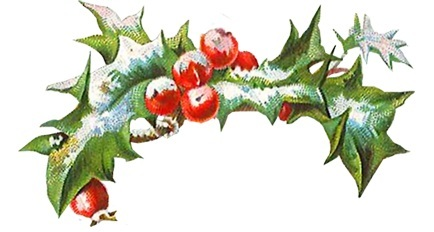 Holly with berries and snow