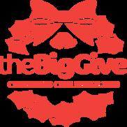 Big Give 2020
