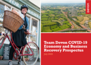 Team Devon Recovery Prospectus front page