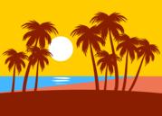 beach sea sun