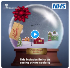 Government Christmas bubble video link