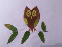owl image made of leaves