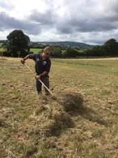 Ranger pitching hay at Dawlish Countryside Park