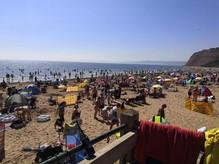 beach teignbridge