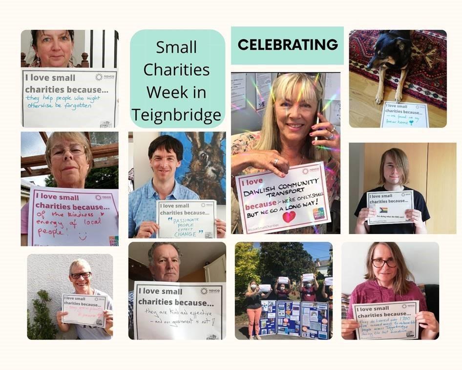 Teignbridge small charities