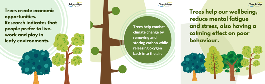 Thee graphic tree images with core messages re the value of trees