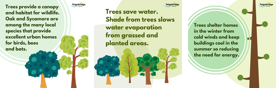 three graphics with different messages re benefit of trees